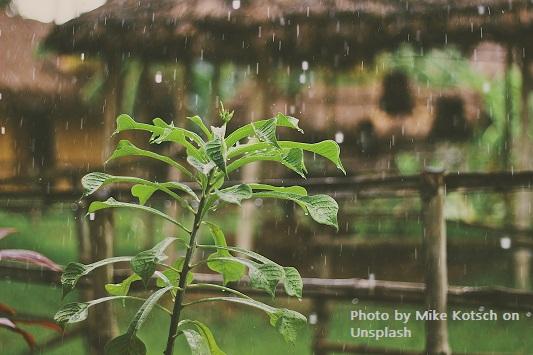 Serial Do'a: Doa Meminta Hujan